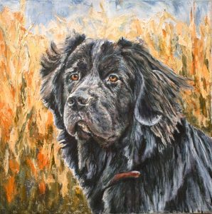 Newfoundland dog oil painting